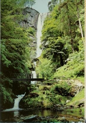 Wales 84114-001