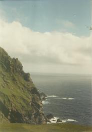 St Kilda 88033