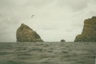 St Kilda 88146